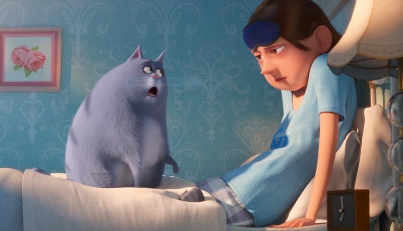 """O novo trailer de """"Pets: A Vida Secreta dos Bichos 2"""" é dominado pela gata Chloe"""