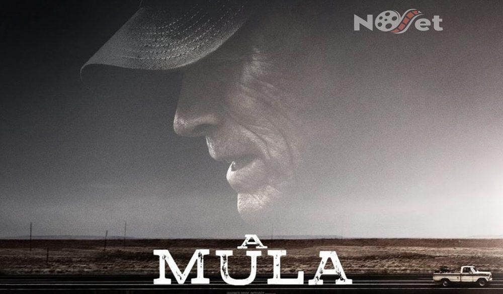 A Mula: novo filme de Clint Eastwood mostra que um ótimo diretor faz a diferença.