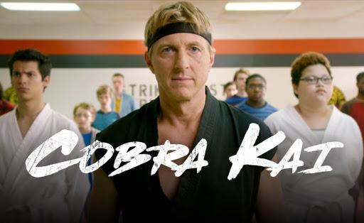 Cobra Kai: A Volta do Karate Kid (2ª Temporada)
