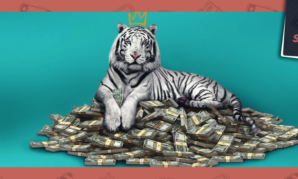 SetCast 256 – O Tigre Branco, comer ou ser comido